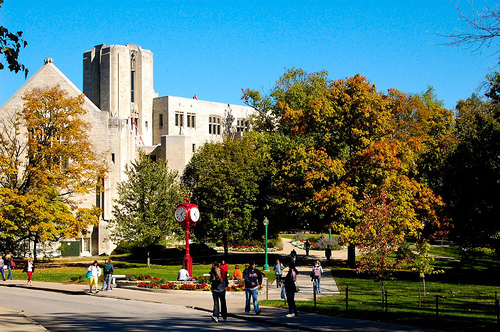 Indiana-University-bloomington-ceo-degree