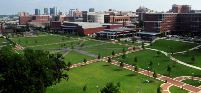 University-of-Alabama-at-Birmingham-bs-economics