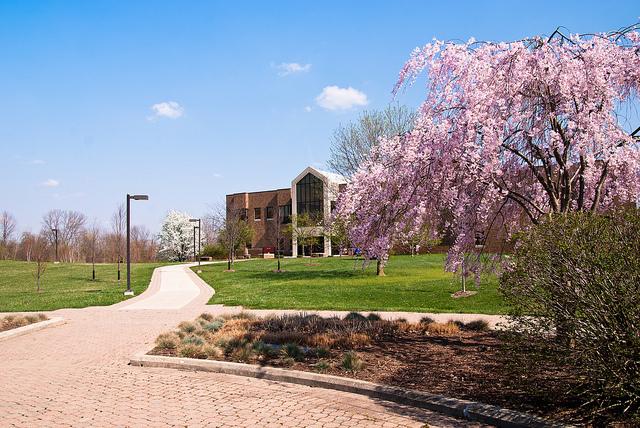 indiana-university-east-online-actuary-degree