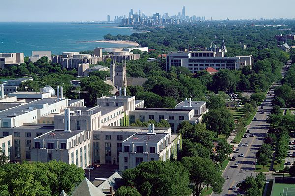 northwestern-university-ceo-degree