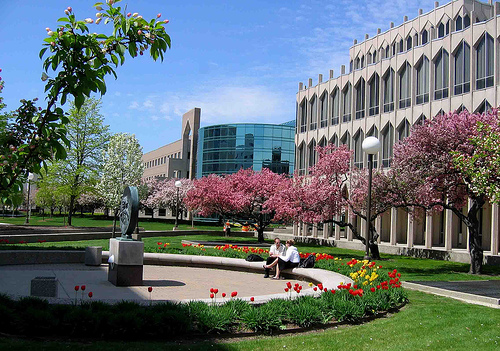 university-of-detroit-mercy-ma-financial-economics
