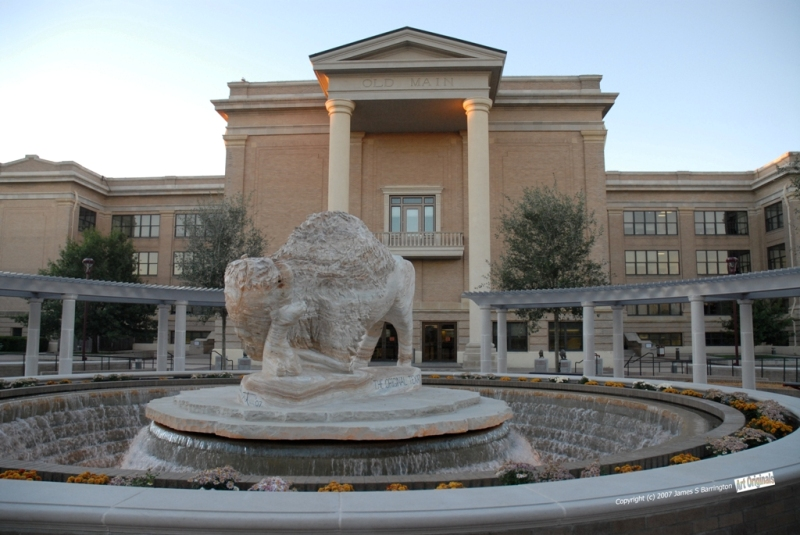 west-texas-a&m-university-online-ceo-degree